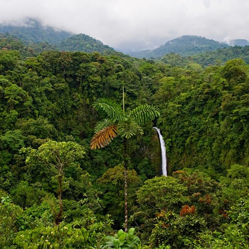 Luxury eco-lodge break for two in the rainforests of Costa Rica