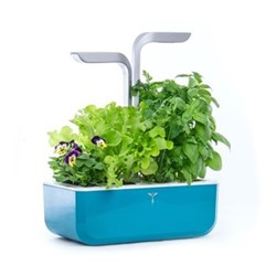 Smart Indoor garden, 38 x 33 x 19cm, teal blue