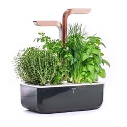 Smart Indoor garden, 38 x 33 x 19cm, copper