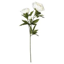 Faux peony duchesse de nemours stem, white