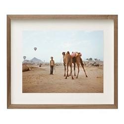 Pushkar V by Helene Sandberg Framed fine art photographic print with deckled edge, H61 x W74 x D3.3cm, walnut frame