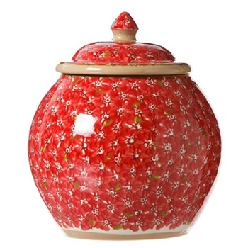 Lawn Cookie jar, H22.9 x W10.8cm, red