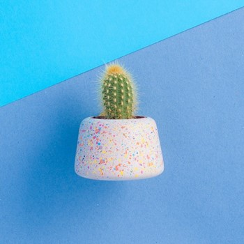 Sprinkles Small Concrete Planter or Tea Light Holder Planter, L75 x W9 x H6cm, multi-colour