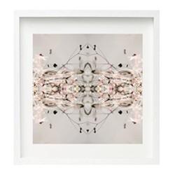 Vertebral by Oliver Barnett Framed fine art photographic print, H75 x W75 x D3.3cm, white frame