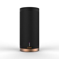Bluetooth speaker H21 x W10 x D10cm