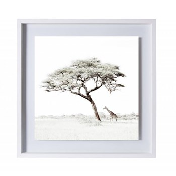 Lone Giraffe Under Tree by Caroline Gibello Framed photographic print, 51.9 x 51.9cm, white