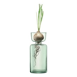 Canopy Vase, H20cm, clear