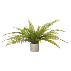Faux potted fern plant, H47 x L105 x W105cm, Green