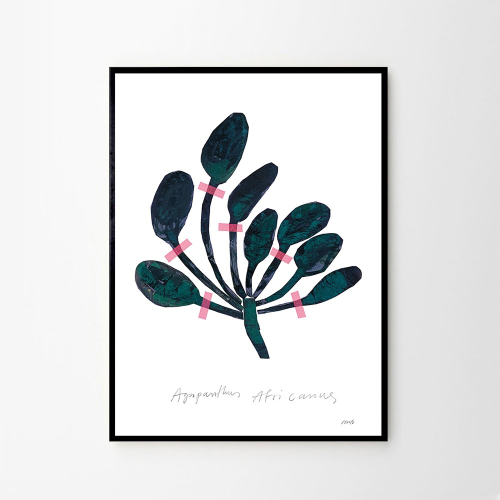 Agapanthus, Nygards Maria Bengtsson, H40 x W30cm, Green