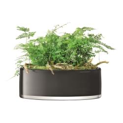 Stems Planter, Dia30cm, slate