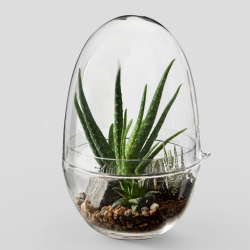 Grow Large greenhouse, D20 x H32cm, Clear