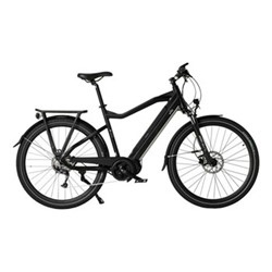 E1050 Unisex E-bike, 36V - 250W - 9 Speed, black