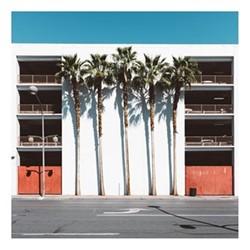 Las Vegas Palms by Kate Ballis Fine art photographic print, H42 x W42cm