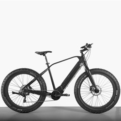 E-SUMO Off-road E-bike, 36V - 250W - 10 Speed, black