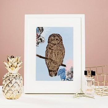 Owl Mounted print, 32.5 x 43cm, white frame