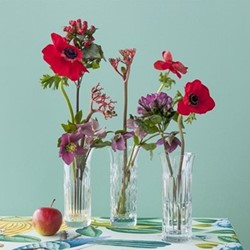 Flora Set of 3 vases