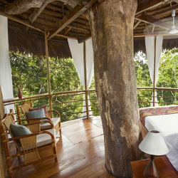 Treehouse retreat for two in the Amazon
