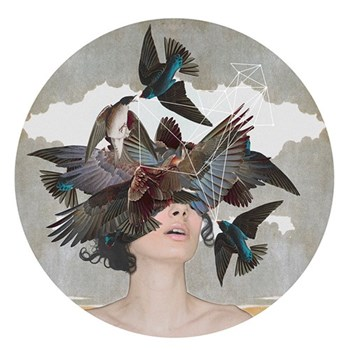 Example Artwork- Limited Edition Print Swallow Blind by Alexandra Gallagher