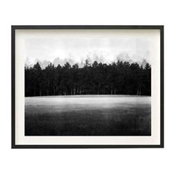 At Lawn by Jonty Sale Framed fine art photographic print with deckled edge, H27.9 x W42cm, black frame