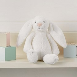 Small bashful bunny