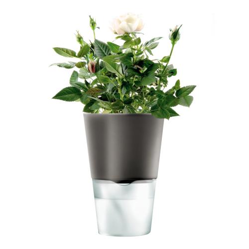Self watering herb pot, 11cm, Dark Grey