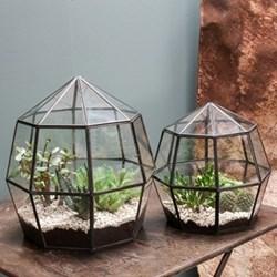 Small terrarium 30 x 30 x 31cm