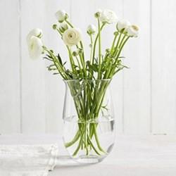 Boston Large vase, H25 x D15cm, clear