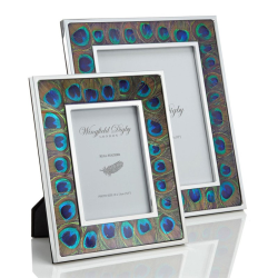 """Feather and Glass Photograph frame, 8 x 10"""", peacock feather"""