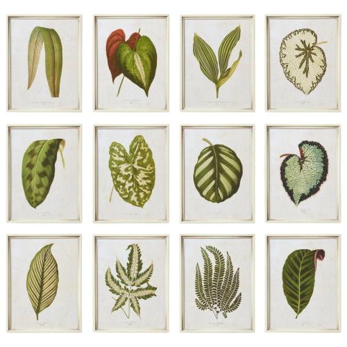 Exotic Leaf Set of 12 framed prints, W24 x D3 x H31cm, Green
