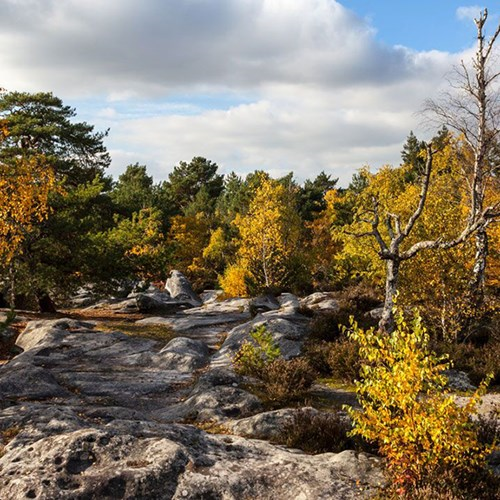 The world's best bouldering break for two people in Fontainebleau