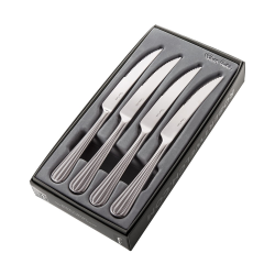 Palm Bright Set of 4 steak knives, stainless steel