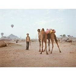 Pushkar V by Helene Sandberg Fine art photographic print, H32.6 x W42cm