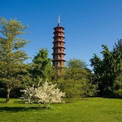 Private tour of the Royal Botanic Gardens at Kew and Michelin star dining for two