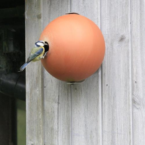 Birdball Wall mounted birdhouse, Dia18cm, Terracotta