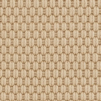 Rope Polypropylene indoor/outdoor rug, W259 x L335cm, wheat