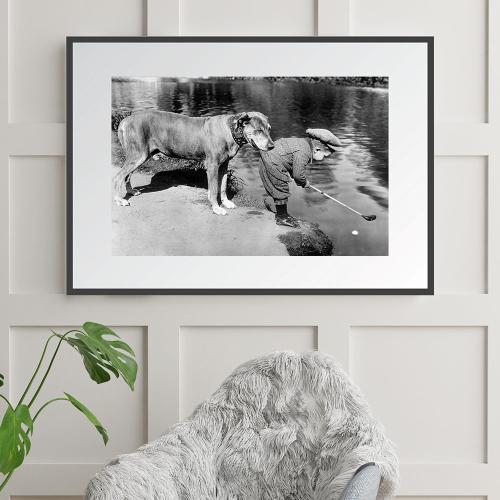 Helpful Dog Framed photograph, H61 x W71cm
