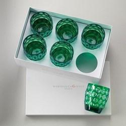 Acrylic Lente Short Tumblers