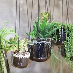 Viri Hammered Glass Hanging Planters