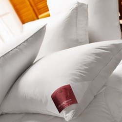 The Bauschi Lux - Polyester Low Allergy Pillows